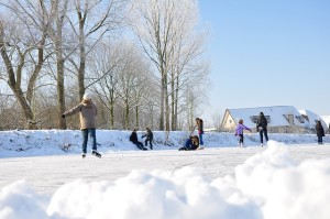 ice skaters near homes