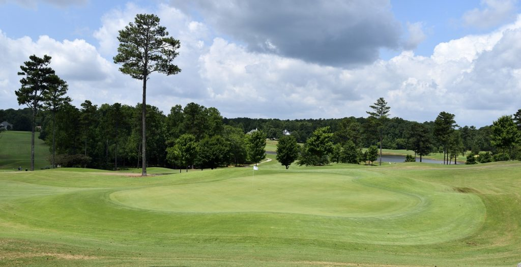 Large golf course surrounded by trees.